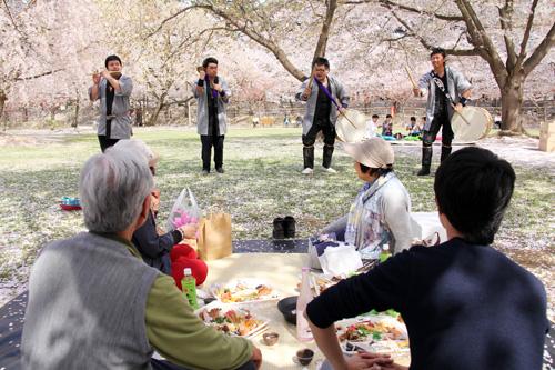 手ぶらで観桜会の様子