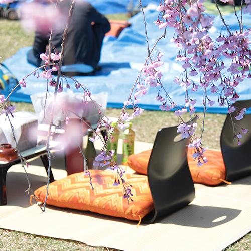 手ぶらで観桜会 極コースのサービス