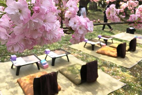 手ぶらで観桜会 極コースの席