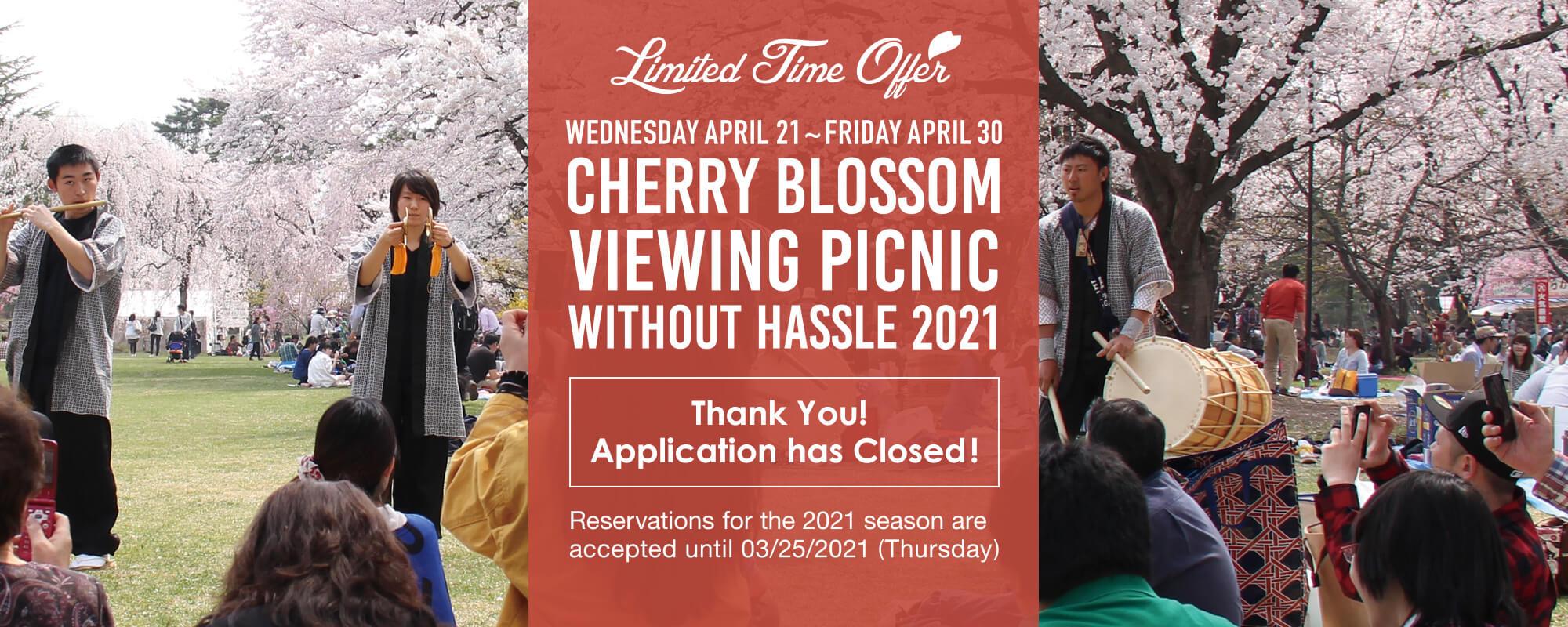 Enjoying the Cherry Blossoms at Hirosaki Park, a Famous Sakura Sight